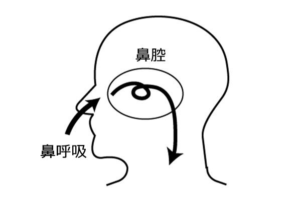 口呼吸を鼻呼吸にするメリット